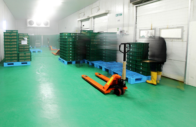 Flowfresh Floors Give Germs The Slip In the Food and Beverage Sector